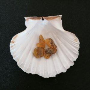 morceau ambre